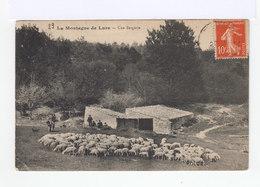 La Montagne De Lure. Alpes De Haute Provence. Une Bergerie. Troupeau De Moutons. Bergers. (2790) - Elevage
