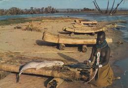 UGANDA - Turkana - Cutting Up The Catch By The Fishing Boats - Uganda