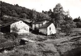 Bertogne - Moulin De Rahlmont - Bertogne