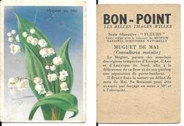Image Bon-point, Série Fleurs,muguet De Mai - B. Flower Plants & Flowers