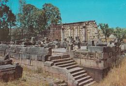 JUDAICA . CPM 9X14 . ISRAEL . CAPERNAUM . Ancient Synagogue - Judaisme