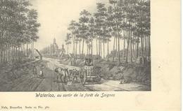 WATERLOO: Au Sortir De La Fôret De Soignes - TRES RARE CPA - Nels Série 11 N° 380 - Waterloo