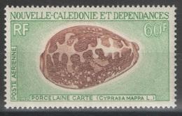 Nouvelle-Calédonie - YT PA 116 ** - Coquillage - Shell - Poste Aérienne