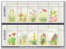 Zuid Afrika 2000, Postfris MNH, Medicinal Plants - Ongebruikt