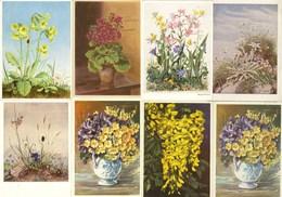 AK 8 Stück Ansichtskarten Blumen-Motive   (2876 - Postales