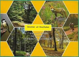 ! - Belgique - Houthalen - Groeten Uit ... (Bonjour De ... ) - Vakantiehuis De Bosberg Domein Kelchterhoef - Houthalen-Helchteren