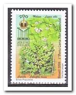 Brazilië 2008, Postfris MNH, Plants - Ongebruikt