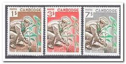 Cambodja 1966, Postfris MNH, Plants - Cambodja