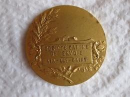 Médaille Société Canine De Savoie . Aix-les-Bains ,par Boussard - France