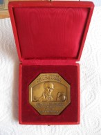 Médaille Caisse Epargne Rhone Alpes Auvergne. B Delessert . Attribué à Carton 1976 Valence ,par Gregoire 1935 - France