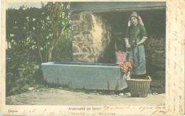 Ardennaise Au Lavoir 1901 - Voyagé. (éditeur?) - Belgique