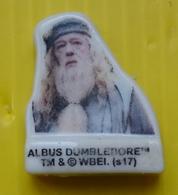 Fève  - Harry Potter 2018 - Albus Dumbledore - Characters