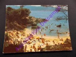 CPSM Ile Du Levant La Plage Des Grottes FKK Nudistes - France