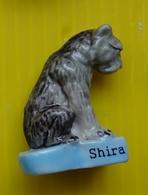 Fève  - L ' âge De Glace 4 - La Dérive Des Continents - Asie Shira - Réf AFF 2013 1 - Countries