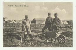 TOBRUK - UN SANADESE AL LAVORO - NV FP - Libia
