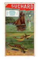 Chromo Chocolat Suchard, Suisse, 186 / 12, Poissons - Suchard