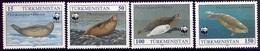 TURKMENISTAN 1993 (Yvert 40-43) - WWF Phoque (MNH) Sans Trace De Charnière - 030 - Turkménistan