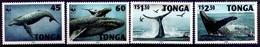 TONGA 1996 (Yvert 1040-43) - WWF Baleine (MNH) Sans Trace De Charnière - 030 - Tonga (1970-...)