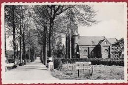 BOLDERBERG Kerk En Laan Sint-Jobkerk Heusden Zolder Limburg (In Zeer Goede Staat) - Heusden-Zolder