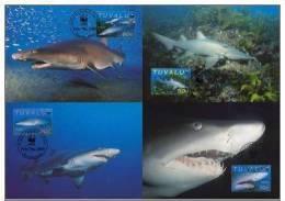 WWF W.W.F. MC Tuvalu Sand Tiger Shark 2000 Set Fauna Marine Life - Maximum Cards