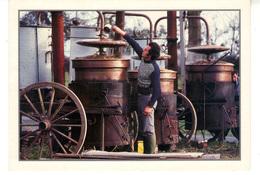 CPM   -   Le Distillateur - Agriculture