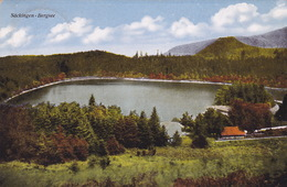 Säckingen - Bergsee (br3827) - Bad Saeckingen