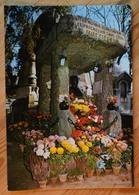 Paris - Cimetière Du Père Lachaise - Tombeau D'Allan Kardec - (n°12682) - Distretto: 20
