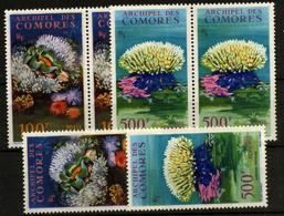2637- Islas Comores Nº 5/6 - Sellos