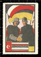 German Poster Stamp Cinderella Reklamemarke World War One Propaganda Artist Alexander M. CAY Turkey, Flag - WW1