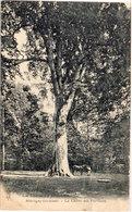 MARTIGNY LES BAINS (Vosges) Le Chêne Des Partisans  (105990) - Arbres
