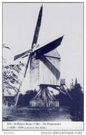 SINT-PIETERS-RODE Bij Holsbeek (Vl.-Brab.) - Molen/moulin - Blauwe Prentkaart Ons Molenheem Van De Gewezen Dorpsmolen - Holsbeek