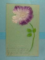 Fleur Relief - Fleurs