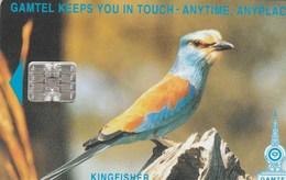 Gambia -  Bird - Kingfisher (CN: C4Cxxxxxx) - Gambia