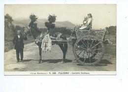 PALERMO, Sicily, Itlay Carretto Siciliano Ed. Ne Randazzo N. 1308 ( Attelage ) - Palermo