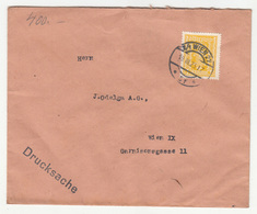 Austria Letter Cover Travelled 1925 B180508 - Cartas