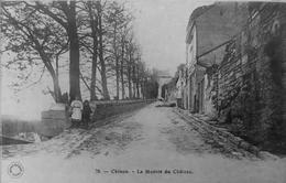 La Montée Du Chateau - Chinon
