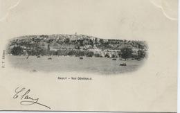 SAULT (Vaucluse) Vue Générale / 1902 - Autres Communes