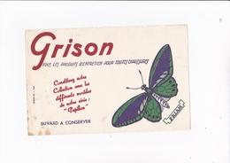 GRISON / PAPILLON PRIAM / RARE - Wash & Clean
