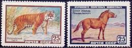 RUSSIA - USSR - TIGER - HORSE - **MNH - 1959 - Cavalli