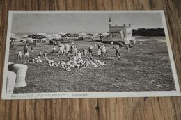 168- Zuiderzeebad, Oud Valkeveen, Zonnebad - Naarden