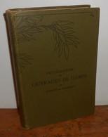 Encyclopédie Des Ouvrages De Dames. Thérèse De Dillmont. - Encyclopaedia