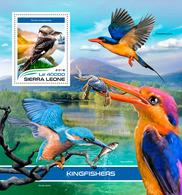 SIERRA LEONE 2018 - Kingfishers, Crab S/S. Official Issue. - Schaaldieren