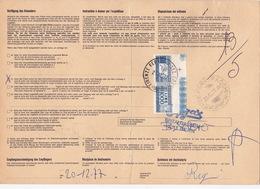 Paketkarte Aus Der Schweiz (G013) - Pacchi Postali