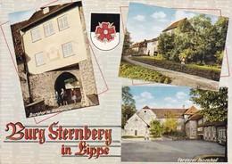 Postcard Burg Sternberg In Lippe My Ref  B22587 - Germany