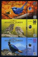 SET Atlantic Forest 35;36;37 Aves Dollars 2017 - Monal, Fairywren, Owl - Billets