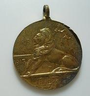 Medal (26mm) Netherlands???? * 1813-1913 Vrijheid * Aankomst Van Prins Willem VI * Tescheveningen - Netherland