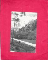 GIROMAGNY - 90 - Le Rosemont - BARA - - Giromagny