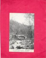 GIROMAGNY - 90 - Le Pont De La Rosemontoise  - BARA - - Giromagny