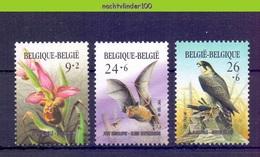 Nbm0679 FAUNA VOGELS VALK VLEERMUIS BLOEMEN FLOWERS FALCON BIRDS BAT FLEDERMAUS BELGIQUE BELGIË 1987 PF/MNH - Vleermuizen