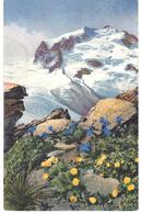 POSTAL   PAISAJE CON FLORES ( GENTIANA BRACHYPHYLLA - PONTENTILLA FRIGIDA ) - Postales